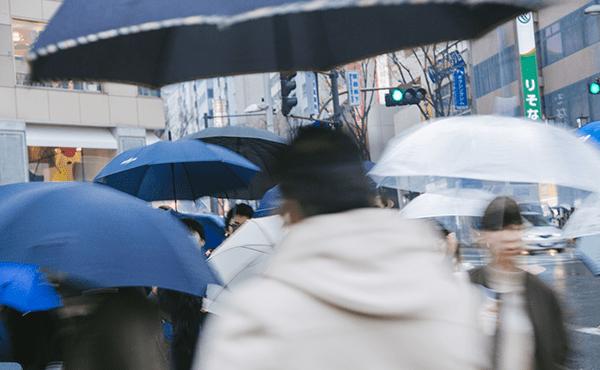 雨予報01